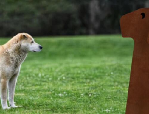 Dog Litter Bin Bau Bau